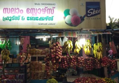 Salam store's and fruits danapady