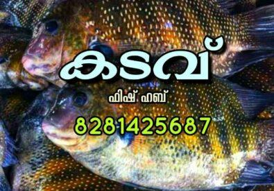 kadavu fish Home Delivery